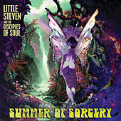 Summer Of Sorcery von Little Steven