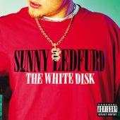 The White Disk by Sunny Ledfurd
