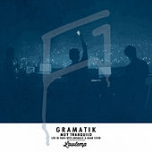 Muy Tranquilo (Live in Paris) by Gramatik