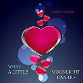 What a Little Moonlight Can Do by Various Artists