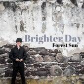 Brighter Day de Forest Sun