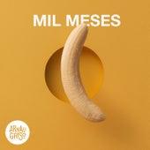 Mil Meses (Acústico) de Arnau Griso