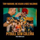 Pitbull Sem Coleira by Tony Mariano