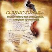 Classic Tunes, Vol. 2 by Salzburg Concerto Ensemble