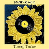 Sunflower by Tommy Tucker