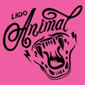 Lado Animal de Orquestra Jabaquara
