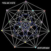 Intuition by Delicate