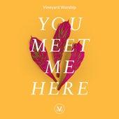 You Meet Me Here by Vineyard Worship