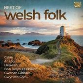Best of Welsh Folk de Various Artists