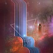 Like a Dream by Tim Schaufert