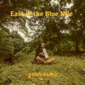 East of the Blue Nile von Addis Pablo