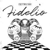 Fidelio von DJ Trush