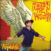 Here in The Heights by Tropidelic