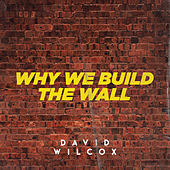 Why We Build the Wall by David Wilcox