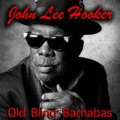 Old Blind Barnabas de John Lee Hooker