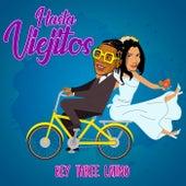 Hasta Viejitos de Rey Three Latino