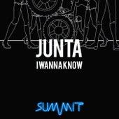 I Wanna Know von Junta