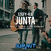 I Don't Wanna Live Forever (Remix Dance) von Stefy K