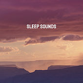 Sleep Sounds by Various Artists