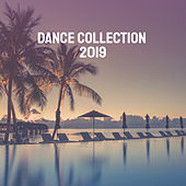 Dance Collection 2019 by Various Artists
