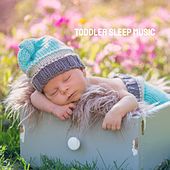 Toddler Sleep Music by Various Artists