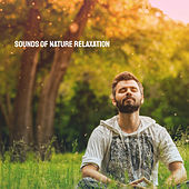 Sounds of Nature Relaxation de Various Artists