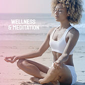 Wellness & Meditation by Various Artists