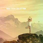 Yoga Tribe Collection by Various Artists