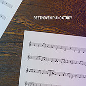 Beethoven Piano Study by Various Artists