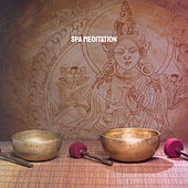 Spa Meditation von Various Artists