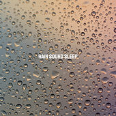 Rain Sound Sleep de Various Artists