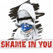 Shame In You de Shame