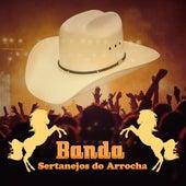 O Romântico Apaixonado by Manoel Di Lima