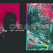 Crazy (feat. Jaz Karis) de 1-69