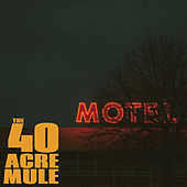 You Better Run by The 40 Acre Mule