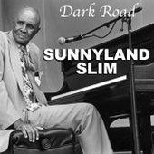 Dark Road de Sunnyland Slim