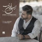 Zibaye Bitab by Babak Jahanbakhsh