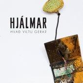 Hvað Viltu Gera? by Hjálmar