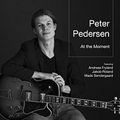 At the Moment (feat. Andreas Fryland, Jakob Roland, and Mads Søndergaard) by Peter Pedersen