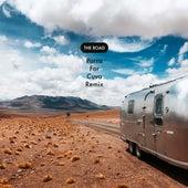 The Road (Parra For Cuva Remix) de Thylacine