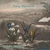 Snowdrop von Tony Bennett