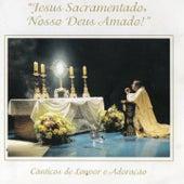 Jesus Sacramentado, Nosso Deus Amado (Cânticos de Louvor e Adoração) [Duplo Louvor] de Toca de Assis