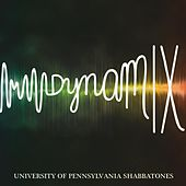 Dynamix de University of Pennsylvania Shabbatones