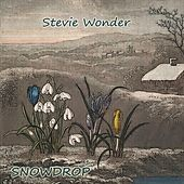 Snowdrop by Stevie Wonder