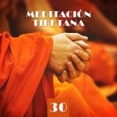 Meditación Tibetana: 30 Tonos Curativos para Mente, Cuerpo y Alma de Various Artists