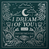 I Dream of You, Vol. 2 (Instrumental) by JJ Heller