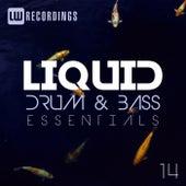Liquid Drum & Bass Essentials, Vol. 14 - EP by Various Artists