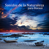 Sonidos de la Naturaleza para Dormir -  Terapias de Relajación y Serenidad, Meditar,  Yoga & Spa, Sanar el Alma de Meditación Música Ambiente