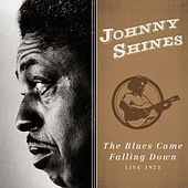 The Blues Came Falling Down (Live 1973) by Johnny Shines