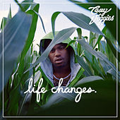 Life Changes de Casey Veggies